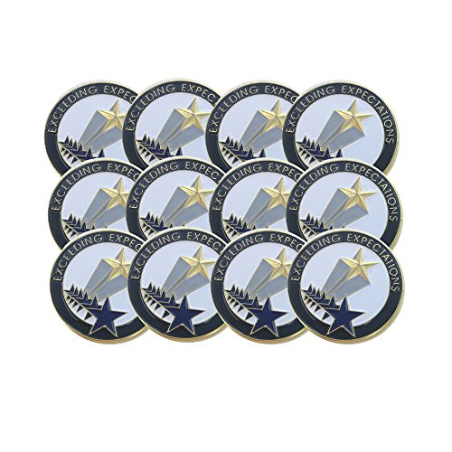 Employee Recognition Pins - 1