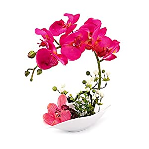 Louis Garden Artificial Silk Flowers 7 Head Simulation Phalaenopsis Arrangements Bonsai (Simulation of Water) (Red) 101