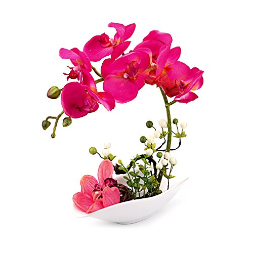 Louis Garden Artificial Silk Flowers Orchid Arrangement Phalaenopsis Arrangements Bonsai (Simulation of Water) (Red) Red Floral Arrangement