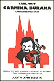 img - for Certuv Kamen book / textbook / text book