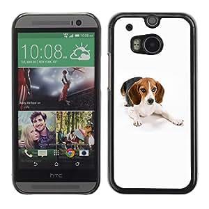 Vortex Accessory Carcasa Protectora Para HTC ONE ( M8 ) - Beagle Foxhound Dog Pet White -