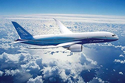 (Bruyu5se Print On Canvas, Aircraft Boeing 787 Plane Poster Art Wall Pictures for Living Room in Canvas Fabric Cloth Print 36 x 24 Inches Unframed Wall Art Home Decor )