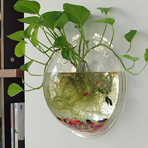 Hot Semicircular Wall Hanging Glass Plant Fer Vase Hyonic Terrarium Fish Bowl Tank Aquarium Home Wedding Decoration   Clear, M