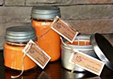 Maple Creek Candles SEX ON THE BEACH ~ Peaches & Oranges ~ Soy Wax Blend 14oz tin candle