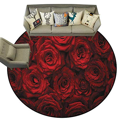 - Dark Red,Carpet Flooring Image of Red Roses with Drops of Water Blooming Bouquet Symbol of Love and Passion D40 Soft Area Rug for Children Baby