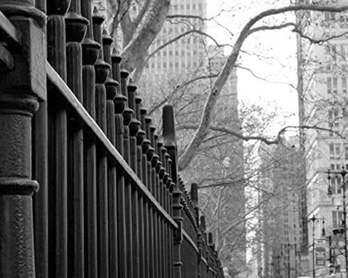 Amazon.com: Black and White Photography, New York City
