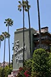 Photography Poster - The Beverly Hills Hotel on Sunset Boulevard in Beverly Hills California 16.5'' x 24''