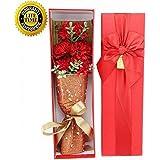 Le seul 5カーネーション、最高の母の日の贈り物、あなたのお母さんの愛の象徴(レッド)