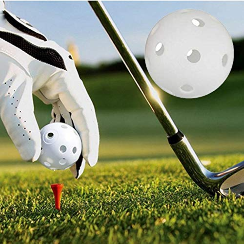 Beyonds 10pcs Golf Training Distance Balls with Hole Airflow Golf White Perforated Plastic Balls for Swing Practice, Driving Range, Home Use Pets Children Pool Balls Toys for - Only Hearts Club Pets