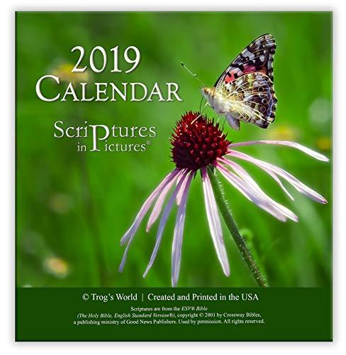 Corinthian Table Base - Scriptures in Pictures Calendar 2019 (Desktop Easel)