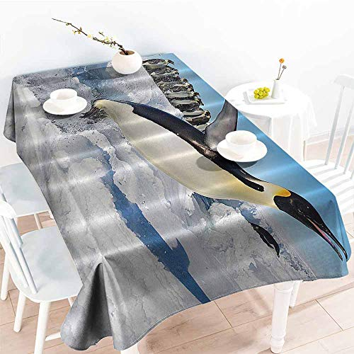 Restaurant tablecloth Penguins Noth Pole Wildlife Swimming Flying Dancing Penguin Family Group Icebergs Antarctica Arctic Bird Art Picture Nature Blue White Black Soft and smooth surface W70