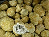Fantasia Materials: 25 pcs Giant Unopened / Uncracked Drusy Quartz Geodes! 3 inch to 5 inch sizes! Break Your Own Geode!