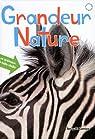 Grandeur nature : Les animaux à taille réelle par Komiya