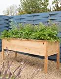 Gardener's Supply Company CedarLast Elevated Planter Box, 28217; x 68217;