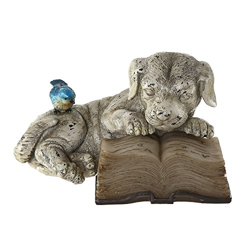 (Ivy Home Schooling Resin Solar Power Outdoor Statuary,Dog read a Book)