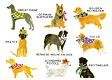 Tall Dogs Boxed Notecards Set of 8 Cards