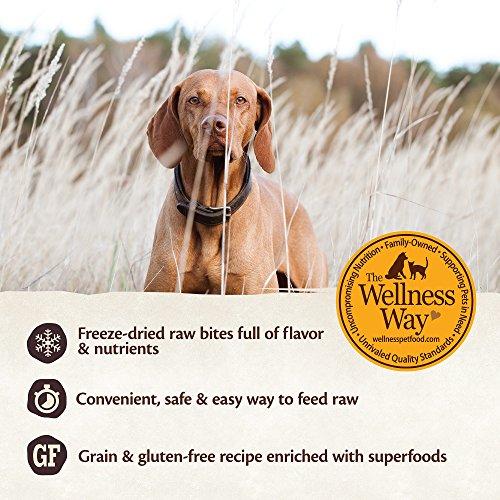 Wellness Core Rawrev Natural Grain Free Dry Dog Food, Original Turkey & Chicken With Freeze Dried Turkey, 20-Pound Bag by Wellness Natural Pet Food (Image #4)