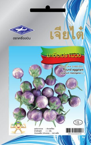 Amazon.com: Púrpura redondo de berenjena semillas (240 ...