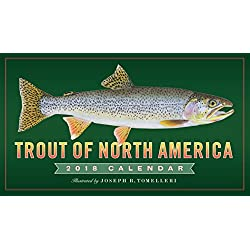Trout of North America Wall Calendar 2018