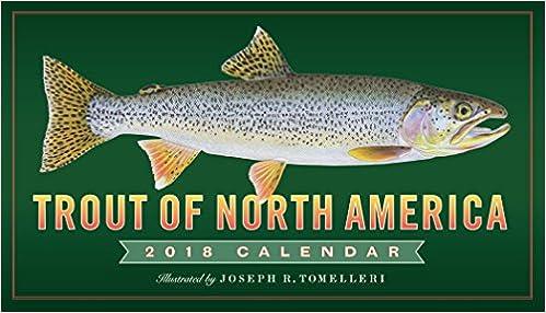 Trout Of North America Wall Calendar 2018 Tomelleri Joseph R 9780761193937 Books Amazon Ca