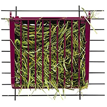 Kaytee Rabbit Hay Buffet Feeder with Snap-Lock Lid (Colors May Vary)