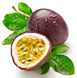 Fresh Florida Grown Passion Fruit (3 Lbs)