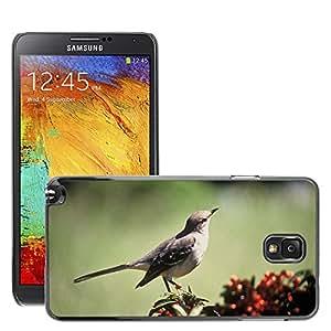 Etui Housse Coque de Protection Cover Rigide pour // M00114745 Pájaro Pájaro cantor Mockingbird del // Samsung Galaxy Note 3 III N9000 N9002 N9005