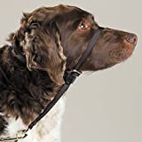 Gentle Leader Dog Head Collars - Training Stop Pulling Lunging Unwanted behavior(Medium - 25 to 60 lbs)