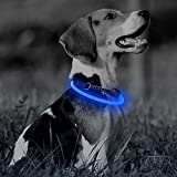 Illumifun LED Dog Collar, TPU Cuttable USB Rechargeable Light Up Collars, 360 Degree Glowing Pet Collar Make Your Dogs Seen & Safe at Night(Royal Blue)