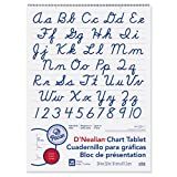 D'Nealian Chart Tablet, 24''X32'', Cursive, 25 Sheets