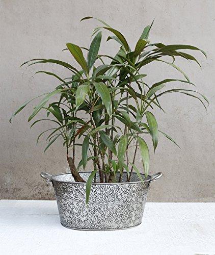 Big Size Outdoor Metal Planters Flower Pots Garden Lawn Display Ideal Home Garden (Halloween Display Ideas Nursery)