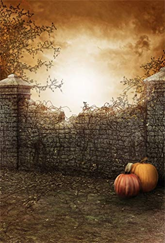 (Leyiyi 8x10ft Horror Halloween Backdrop Pumpkins Abandoned Castle Ruined Farmhouse Grunge Brick Wall Gloomy Weather Photography Background Rural Scary Costume Photo Studio Prop Vinyl)