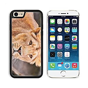 Lion Face Predator Big Cat Apple iPhone 6 TPU Snap Cover Premium Aluminium Design Back Plate Case Customized Made to Order Support Ready Liil iPhone_6 Professional Case Touch Accessories Graphic Covers Designed Model Sleeve HD Template Wallpaper Photo Jacket Wifi Luxury Protector Wireless Cellphone Cell Phone