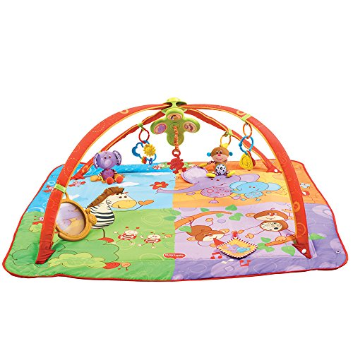 Lights Gymini (Tiny Love Gymini Move and Play Activity Gym, Animals)