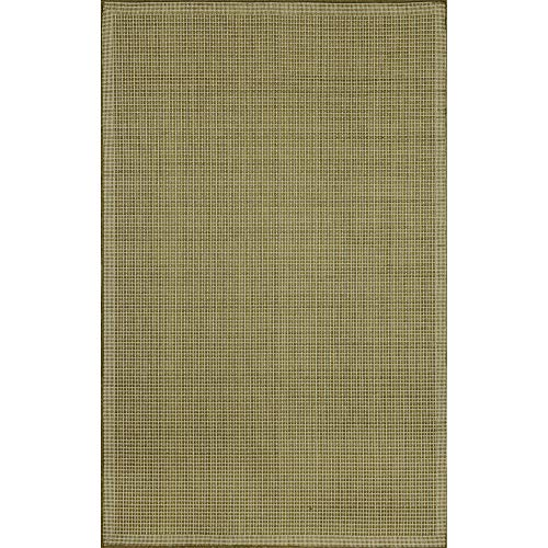 Liora Manne Terrace Texture Rug, Indoor/Outdoor, 39 by 59-Inch, Green/Ivory (Ocean Terrace Trans)