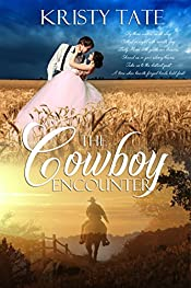 The Cowboy Encounter: a time-travel romance (Witching Well Book 2)
