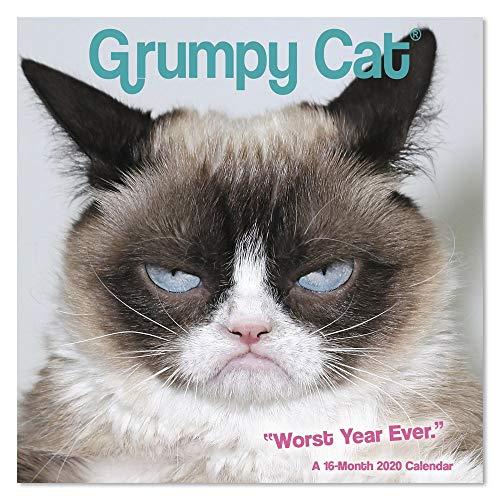 2020 Grumpy Cat Wall Calendar, Mini Calendar (DDMN682820)