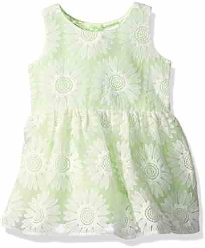 The Children's Place Baby-Girls' Sweet Li'l Daisy Lace Dress