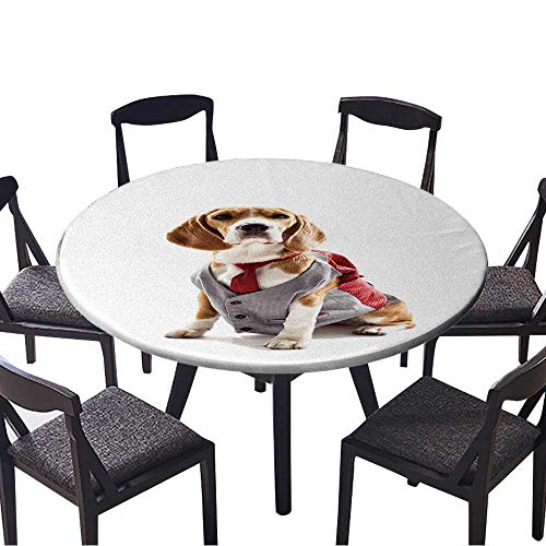 Round Fitted Tablecloth Serious Business Dog in Elegant Costume for All Occasions 35.5