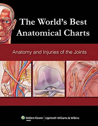The World's Best Anatomical Charts: Anatomy and Injuries of