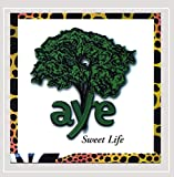 Sweet Life (acoustic soul rock world ambient)