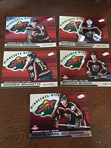 2002-03 Pacific Atomic Hobby Minnesota Wild Team Set Rare 5 Cards ()