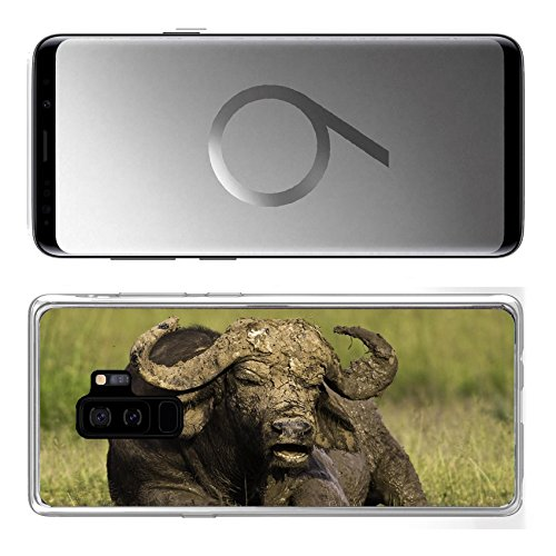 Liili Samsung Galaxy S9 Plus Clear case Soft TPU Rubber Silicone Bumper Snap Cases African Cape Buffalo Photo 20215705 ()