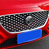 Huanlovely: Car Styling for MG ZS 2017 2018 Silver Mirror Mini Metal Sticker Front Grille Babysbreath Sticker