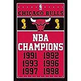 Chicago Bulls NBA Champions Sports Poster