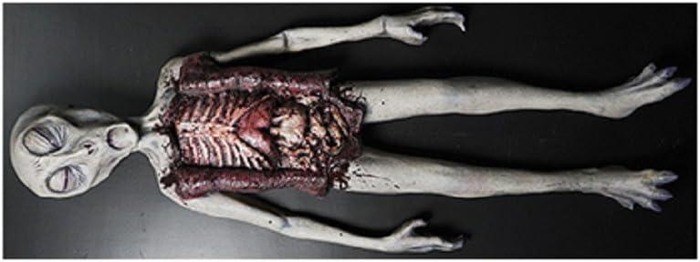 Alien Autopsy Foam Latex Tabletop Two Piece Halloween Decoration Prop D cor