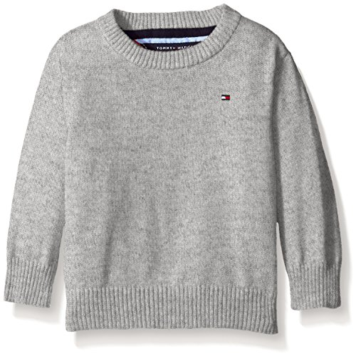 a6565d7e5 Galleon - Tommy Hilfiger Baby Boys' Long Sleeve Alan Crew Neck Sweater, The  Grey Heather, 12 Months