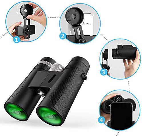 Binoculars for Adults, Compact HD Binocular Bak4 Roof Prism 12×42 for Bird Watching, Low Light Night Vision, High Powered Waterproof Fogproof for Hunting Camping Wildlife Sport View Concerts Best 2019
