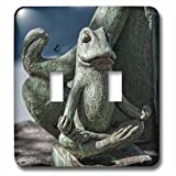 Roni Chastain Photography - Frog Meditation - Light Switch Covers - double toggle switch (lsp_239629_2)