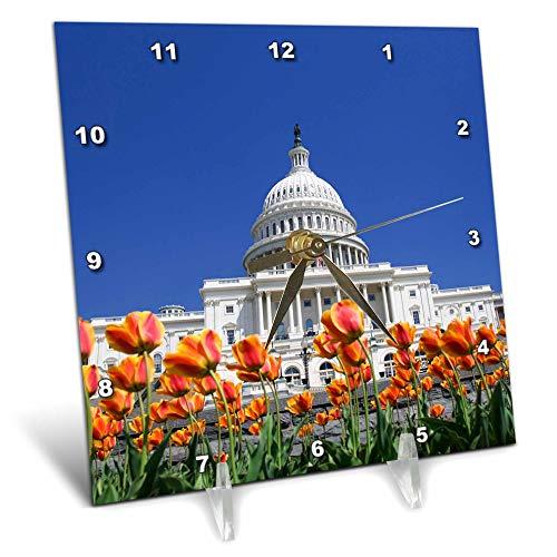 3dRose Danita Delimont - Washington DC - USA, Washington DC. US Capitol Building with Tulips - 6x6 Desk Clock (dc_314755_1)